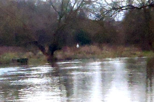 Ghost Spotted On The Banks of The River Trent